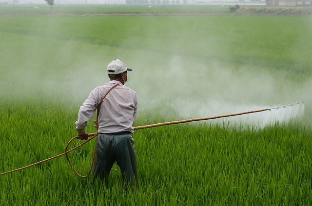 Positive and negative effects of Pesticides