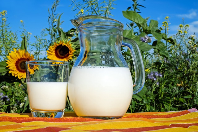 Positive and negative aspects of Milk
